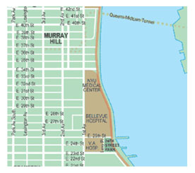 Murray Hill Nyc Map.Murray Hill Nyc Neighborhood Guide The Wexler Team